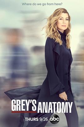 實習醫生格蕾 第十六季